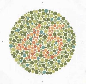 orang dengan mata normal akan melihat angka 45, sedang kebanyakan orang dengan mata buta warna tidak mampu melihat angka apapun